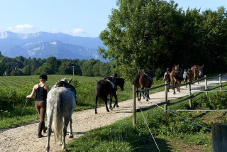 Les circuits à cheval