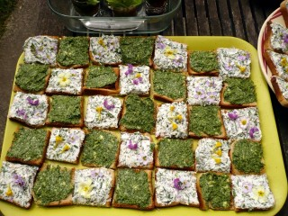 Toasts à base de plantes